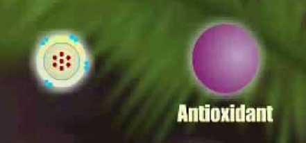 Mocný účinek antioxidantů