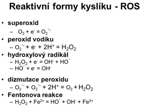 Molekulární vodík jako lékařský plyn
