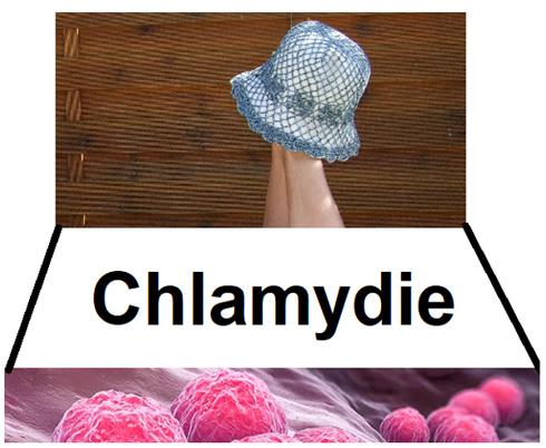 Chlamydie - zooantropatogenní bakterie
