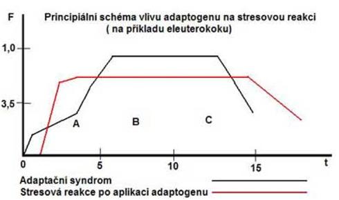 Nespecifická odolnost organismu a její ovlivnění adaptogenními látkami